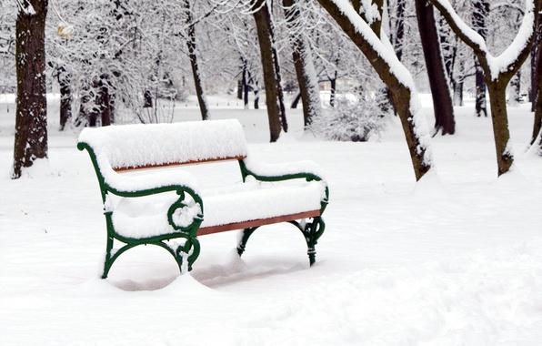 Picture trees, bench, Park, winter, snow, winter landscape