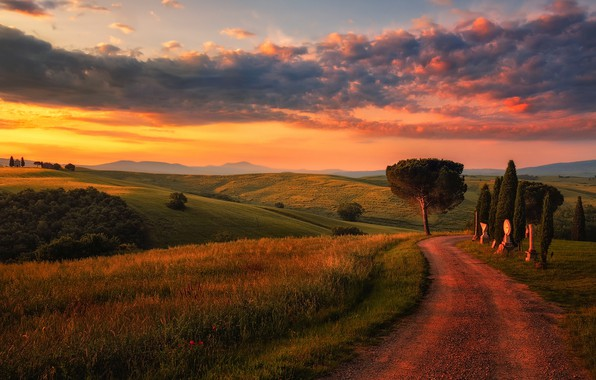 Picture road, the sky, clouds, light, field, the evening, morning, Italy, Tuscany