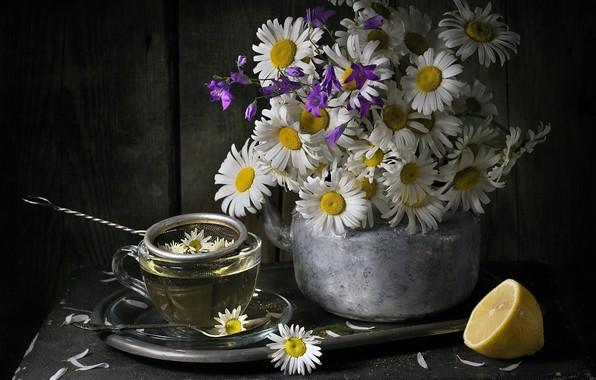 Picture lemon, tea, chamomile, bouquet, kettle, mug, still life, bells
