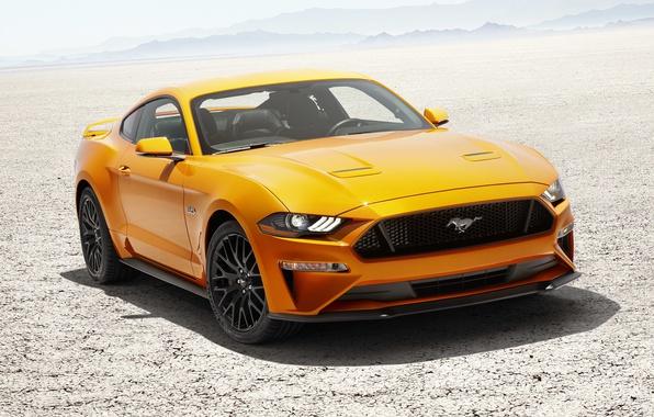 Picture Mustang, Ford, Fastback, Desert, 2017, V8