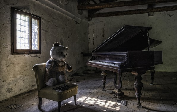 Picture bear, chair, piano