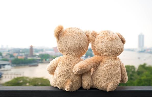 Picture love, bridge, city, the city, river, toy, bear, pair, love, two, river, bear, bridge, view, …