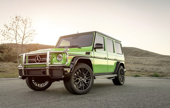 Photo wallpaper Mercedes, G63, AMG, Green, W463