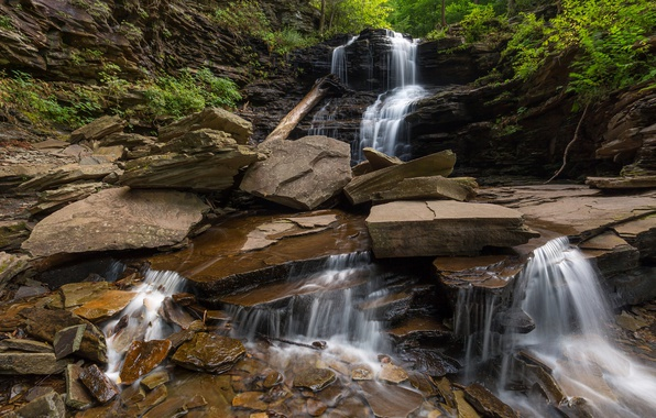 Picture stones, waterfall, cascade, Pennsylvania, Ricketts Glen State Park