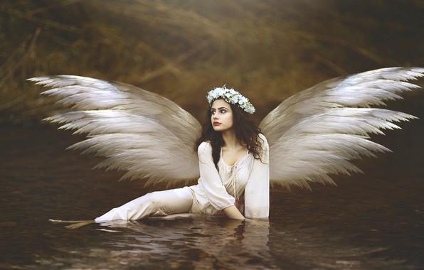 Picture water, girl, flowers, wings, angel, brunette, wreath