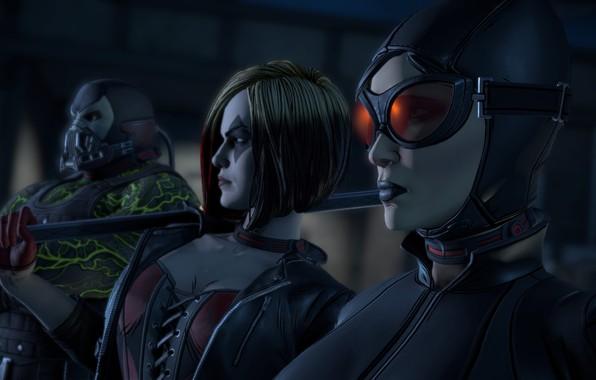 Picture mask, game, catwoman, mask, DC Comics, Bane, Harley Quinn, uniform, squad, Batman - The Telltale …