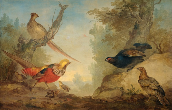 Picture animals, birds, oil, picture, canvas, Art Schumann, Pheasants