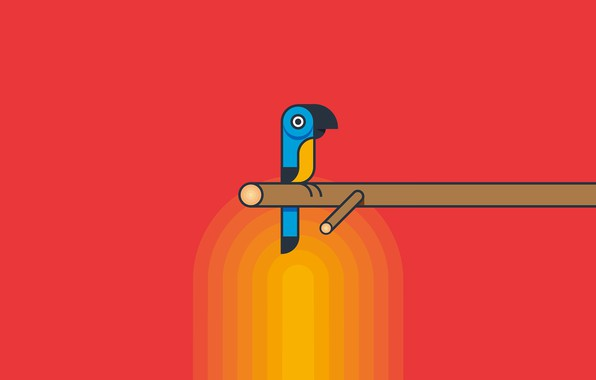 Picture animal, bird, Ara, parrot, Raduga