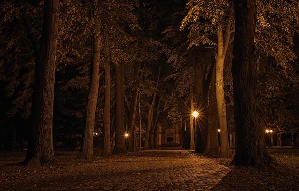 Picture Landscape, Czech republic, Alley at night
