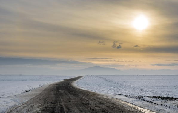 Picture winter, road, the evening