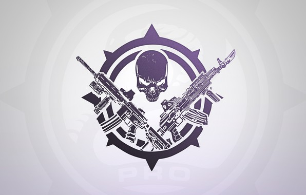 Picture Skull, Weapons, Sake, PRO, Two guns, About, Contract Wars, BEAR, USEC, Escape from Tarkov, Tarkov, …