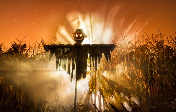 Photo wallpaper Halloween, Lord of the Corn, holiday