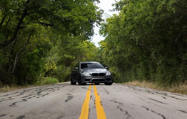 Picture BMW, F10, Graphite