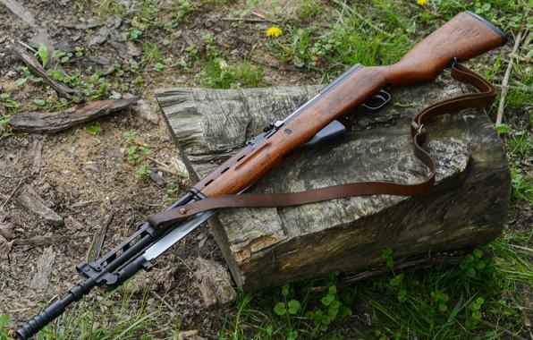 Picture carabiner, self-loading, SKS, Self-loading carbine Simonov
