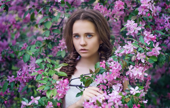 Picture look, branches, face, mood, spring, Apple, flowering, flowers, braids, Dasha, Anastasia Dobrovolskaya