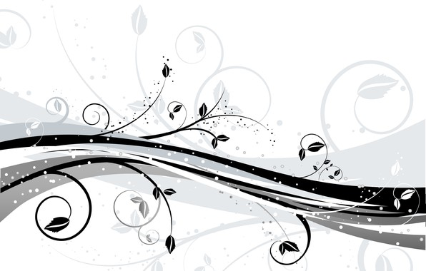 Picture flowers, abstraction, background, texture, white, black, background, Vector, floral
