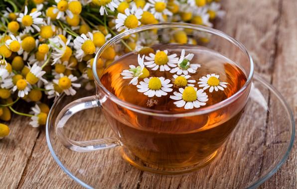 Picture tea, Daisy, flowers
