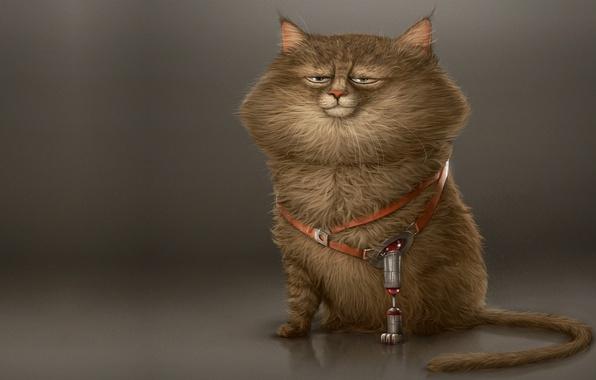 Picture cat, character, mood, paw, minimalism, Koshak, art, prosthesis, Alexandre Blain