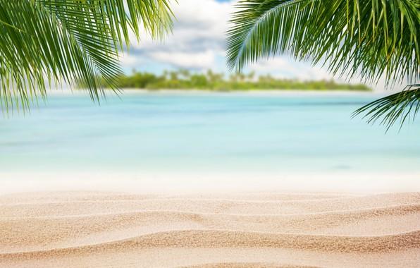 Picture sand, sea, beach, nature, the ocean, summer, beach, sea, sunset, island, Maldives, crystal, sand beach, ...