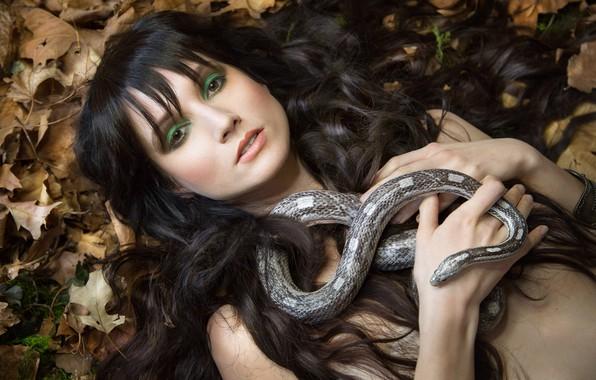 Picture look, leaves, girl, face, hair, snake, makeup, Melanie Kazmercyk