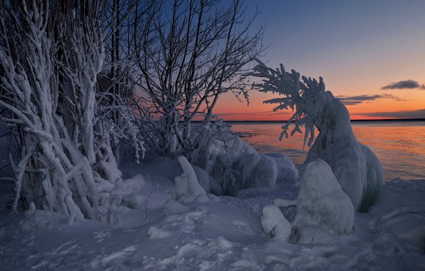 Picture winter, snow, trees, sunset, lake, Canada, Ontario, Canada, Ontario, Lake Superior, Lake Superior, Whitefish Bay, …