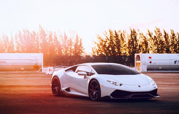 Picture Lamborghini, light, white, Huracan