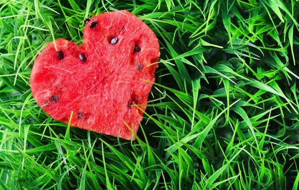 Picture grass, heart, watermelon