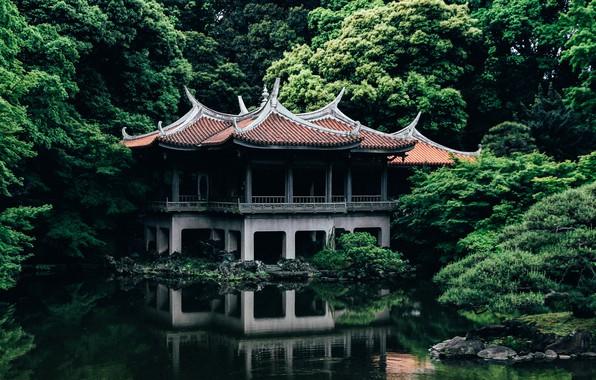 Picture Nature, Lake, Trees, Japan, Tokyo, Temple, Architecture, Shinjuku Gyoen old Goryotei