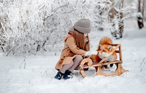 Picture winter, snow, mood, Fox, girl, red, friends, sled, Maria Strelkova