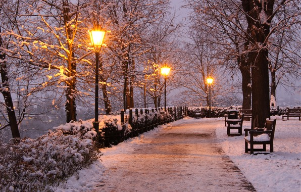 Picture winter, snow, trees, lights, Park, the evening, Czech Republic, lights, track, alley, benches, Brno, Brno