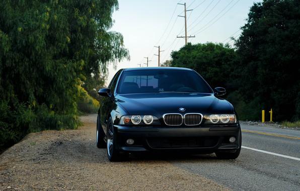 Picture BMW, Black, E39