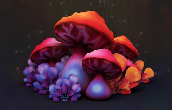 Picture mushroom, art, children's, Mushrooms, Vitaliy Blik