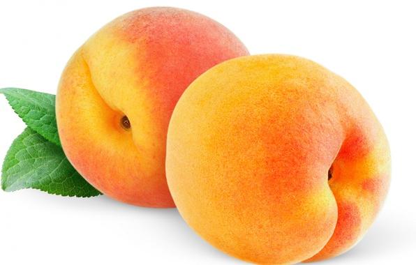 Picture macro, sheet, fruit, peaches