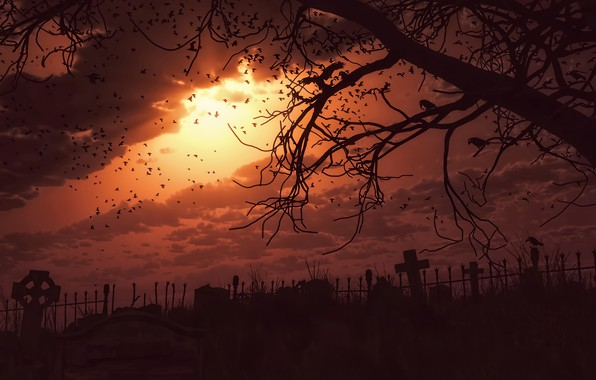 Picture the sky, the sun, sunset, branches, tree, the darkness, dark, cemetery, crows, gloom, terror