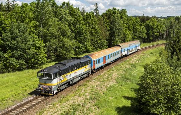 Picture trees, the way, train, cars, railroad, locomotive, Locomotive, railroads