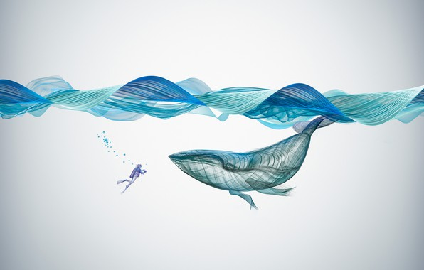 Picture Creative, Underwater, Illustration, Graphics, Whale
