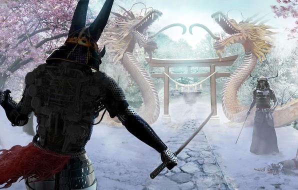 Picture snow, samurai, Joseph Diaz, Snow Ronin