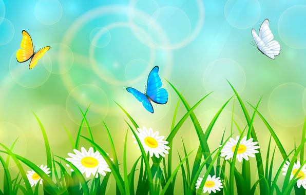 Picture summer, grass, butterfly