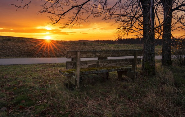 Picture autumn, sunset, bench