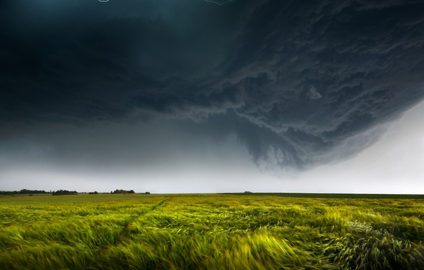 Picture field, the sky, clouds, nature, the wind, lightning