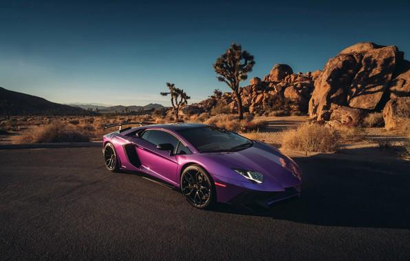Picture Lamborghini, Black, with, Aventador, Satin, HRE, P201