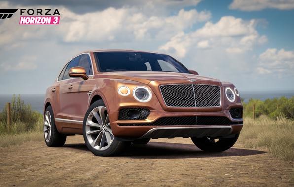Picture car, Bentley, logo, game, Forza Horizon, Forza, Forza Horizon 3