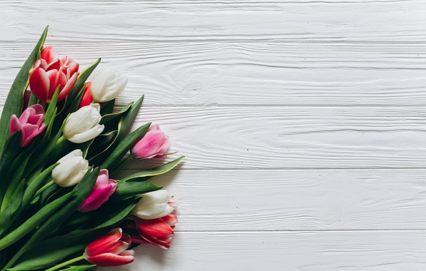 Picture flowers, background, bouquet, spring, Tulips