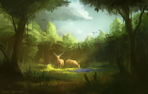 Picture birds, puddle, pair, horns, deer, drink, art, in the woods, on the meadow, cloudy sky, …