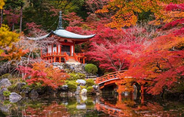 Picture autumn, trees, pond, Park, stones, Japan, pagoda, the bridge, Kyoto, the bushes