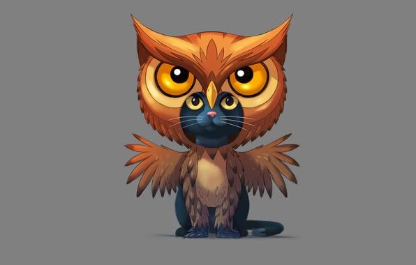 Picture cat, owl, minimalism, cat, owl, savakot