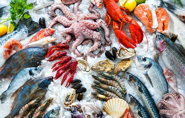 Picture ice, Different types of seafood, white meats