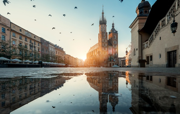 Picture water, the sun, birds, reflection, dawn, street, home, puddle, area, Poland, Krakow