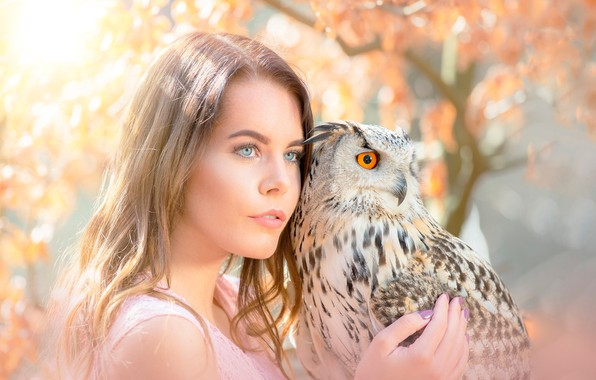 Picture girl, the sun, trees, background, owl, bird, portrait, makeup, hairstyle, brown hair, beauty, bokeh