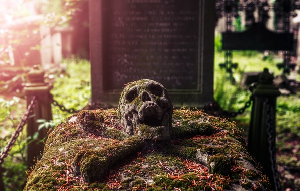 Picture skull, cemetery, grave